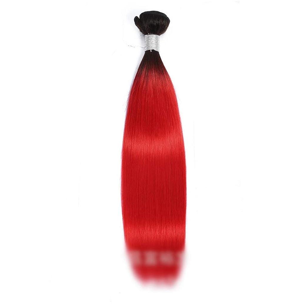 縫い目所有権スパイVergeania 人間の髪の毛1バンドルストレートレミーヘアエクステンション人間の髪の毛の赤い二重よこ糸10-26インチロングストレートヘアウィッグ赤いかつら (Color : レッド, サイズ : 24 inch)