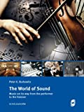 The World of Sound: Music on its way from the performer to the listener (English Edition)