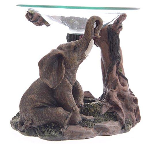 b5495236962a Elephant Gift  Amazon.co.uk