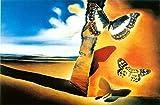 AJleil Puzzle 1000 Piezas Pintura de Paisaje y Mariposas de El Salvador en Juguetes y Juegos Juego de Habilidad para Toda la Familia, Colorido Juego de ubicación.50x75cm(20x30inch)