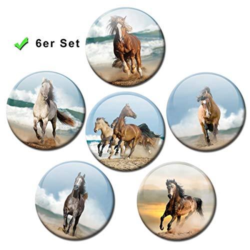 Koelkastmagneten paarden zee 6-delige cadeauset paardenmotief magneten grappig voor magneetbord kinderen sterk groot Ø 50 mm