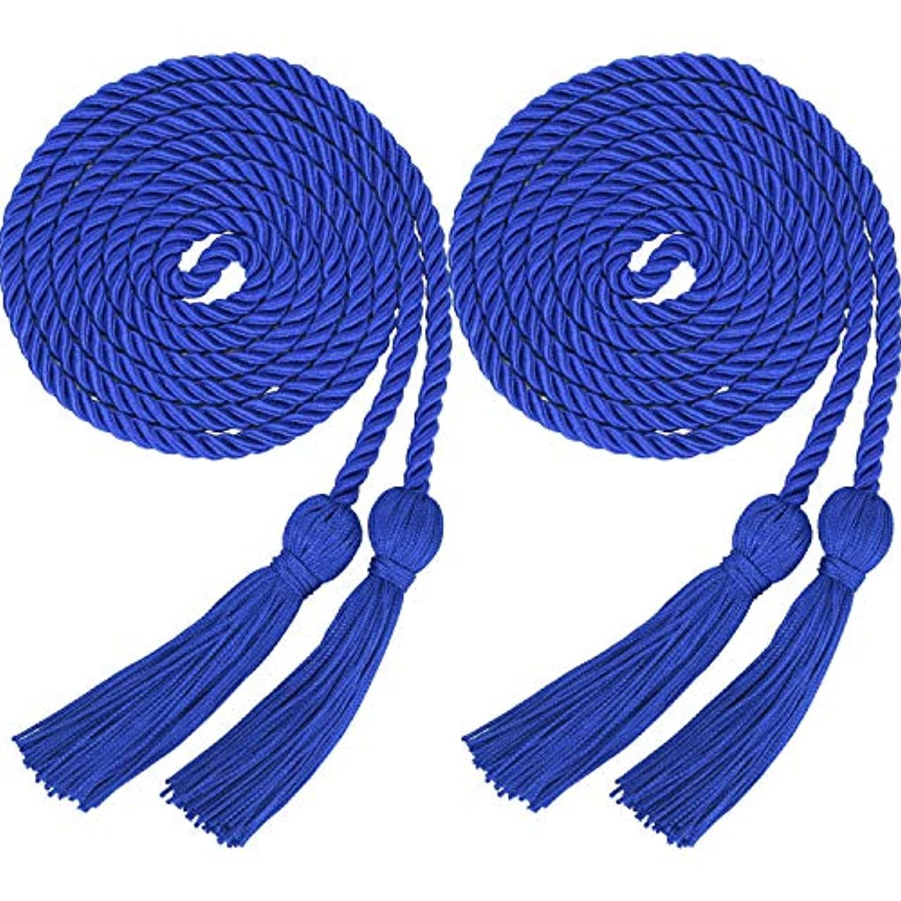 2 Pieces Graduation Cords Polyester Yarn Honor Cord with Tassel for Graduation Students (Blue)