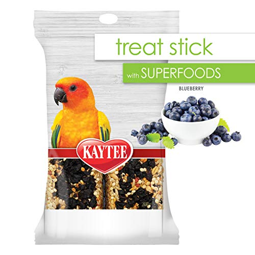 Kaytee Avian Superfood Treat Stick Blueberry 5.5 Ounces