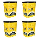 Purina Tidy Cats Clumping Litter 4-in-1 Strength for Multiple Cats 35 lb. Pail (4 Pail)