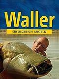 Erfoglreich Angeln - Waller