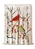 Stony Creek Birch & Cardinals Collection Lighted Rectangle Glass Vase, Choice of Style (A)