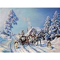 ダイヤモンド刺繡風景雪フルスクエアラウンドドリルクロスステッチダイヤモンドペインティングホースラインストーンキット家の装飾