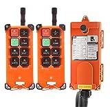 NEWTRY F21-E1B Industrie-Doppel-Emitter, elektrischer Hebekran Funk Funk-Fernbedienung Sender &...