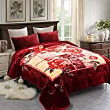 JML Fleece Blanket King Size, Heavy Korean Mink Blanket 85 X 95 Inches- 9 Lbs, Single Ply, Soft and Warm, Thick Raschel Printed Mink Blanket for Autumn,Winter,Bed,Home,Gifts, Burgundy Flower