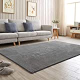 YJ.GWL Large Grey Area Rug Shaggy Microfiber Modern Rug Soft Glittery Non Slippery Nursery Big Mat Indoor Carpet for Kids Play Room Bedroom Living Room Decor 120 x 180 cm