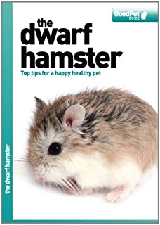 The Dwarf Hamster - Good Pet Guide