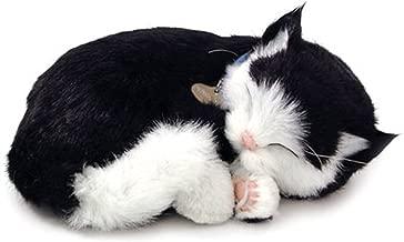 Perfect Petzzz Kitten - Black/ White