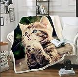 CJZYY - Coperta in pile con stampa 3D a forma di gatto, confortevole e confortevole, morbida, ideale come idea regalo, 130 x 150 cm