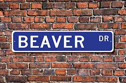 Fhdang Decor Beaver, Beaver Cadeau, Beaver Sign, Beaver Décor, Beaver Amoureux, Expert, Beaver DAM Builder, Plaque de Rue personnalisée, Plaque en métal, 10,2 x 45,7 cm