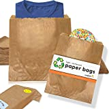 "100 Light, Reinforced Paper Sandwich Bags (Size C:10 x 10"") 