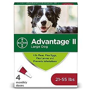 Advantage II 4-Dose Large Dog Flea Treatment, Flea Treatment for Large Dogs 21-55 Pounds