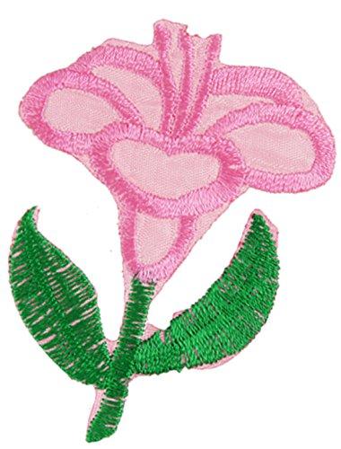 Decoración de la ropa hierro en bordados apliques florales rosa verde