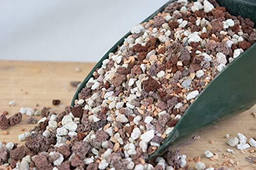6 Qrt. Pre Mix Lava, Pumice & Turface for Bonsai, Succulent - Inorganic Additive