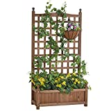 Amerlife Raised Garden Bed with Trellis 4x2.2x1 FT Garden Box for Vine Climbing Plants Vegetable Flower Free-Standing Raised Planter for Yard Garden Indoor Outdoor 48 Inch Height