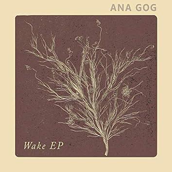 Wake - EP
