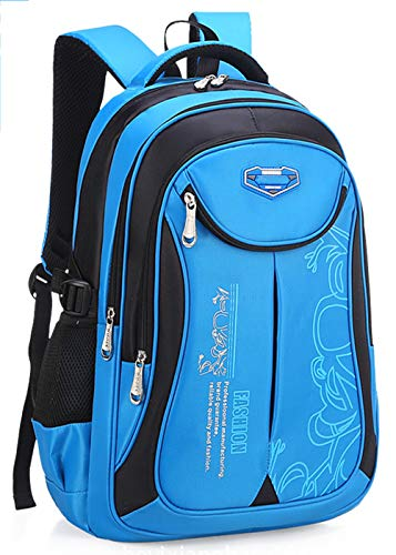 DULEE Mochila escolar impermeable para niños de 6 a 12 años, Blue (Azul) - PLY136-BL-L
