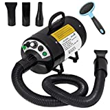 My Pet Command 220V Pet Dog Hair Dryer Professional High Velocity Blower Blaster dryer 500W-2800W 4HP Hot and Cold Adjustable stepless Airflow and Bonus Dog Grooming Brush