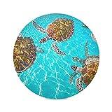 Juego de 4 manteles individuales redondos para el hogar Riviera Maya Turtles Photomount en Caribbean Childrens Table Mat Tapete decorativo para mesa de 15.4 pulgadas Fácil de limpiar para cocina Mesa