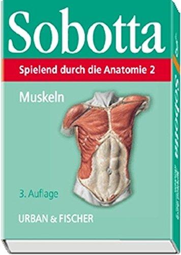 Spielend durch die Anatomie, Lernkarten, Tl.2, Muskeln, 153 Lernkarten