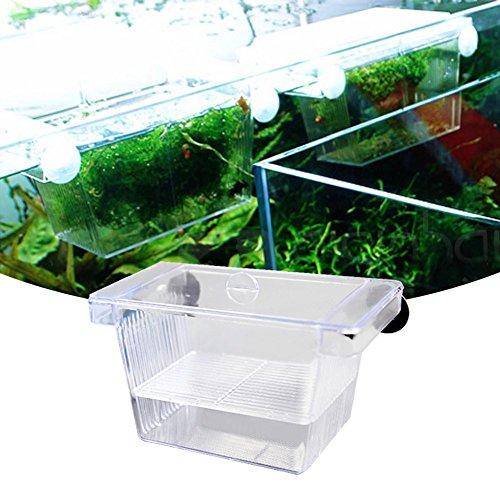 Selbstschwimmender Brutkasten für tropische Aquarien-Fische, doppelstöckig, aus Acryl-Glas