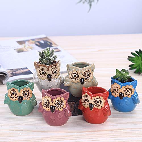 Asdomo, vaso in ceramica a forma di gufo, base in vetro, set seriale per piante grasse, vaso per cactus, vaso da fiori, vaso per bonsai con foro idea da 6