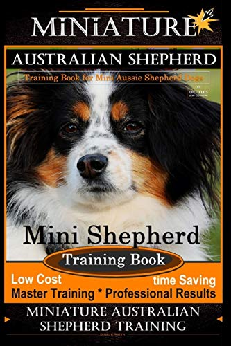 Miniature Australian Shepherd Training Book for Mini Aussie Shepherd Dogs By D!G THIS DOG Training: Mini Shepherd Training Book, Low Cost - Time ... Miniature Australian Shepherd Training