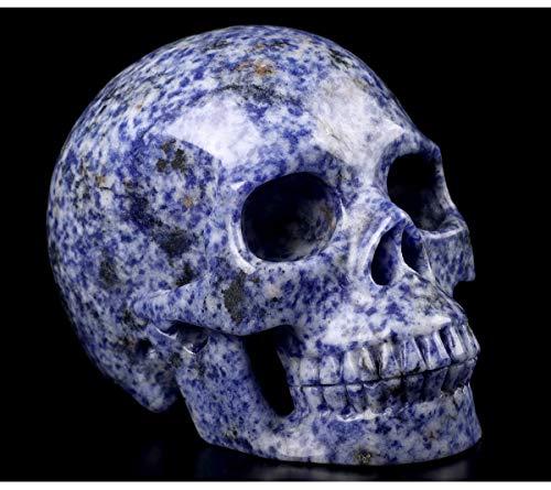Skullis 5.0' Blue Speckled Sodalite Crystal Skull, Hand Carved Gemstone Fine Art Sculpture, Reiki Healing Stone Statue.