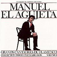 Vol. 8-Great Masters of Flamenco