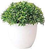 YANGDONG-Dekorative Ornamente- Künstliche Pflanzen Bonsai Baum Kleine Topfpflanzen Gefälschte Blumen in Pot Ornamente, die das Gartenhaus einkaufen Hotel Dekor Bonsai, künstliche Pflanzen DGZSZSPBJ-3