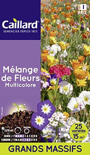 Caillard PFCD21421 Graines de Fleurs Mélange Multicolore 15 m²