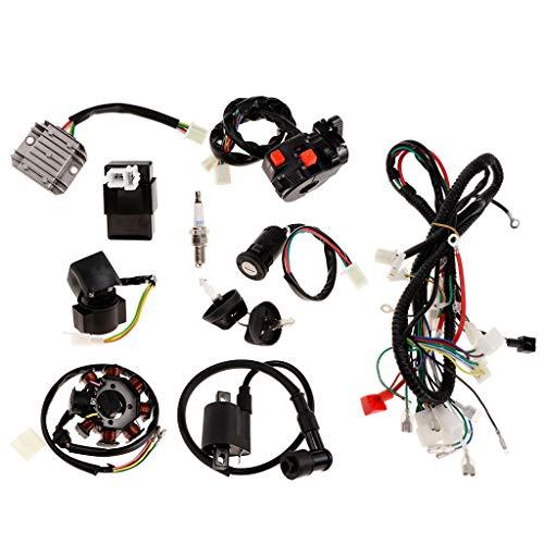 FangFang 1 Las eléctricas del Sistema Completo de arnés de cableado de...