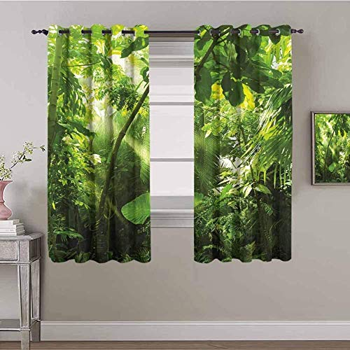 LucaSng Blackout Curtain Thermal Insulated - Green woods plants sunshine - 104x63 inch for Bedroom Kitchen Living Room Boy Girl Window - 3D Digital Printing Eyelet Ring Curtain