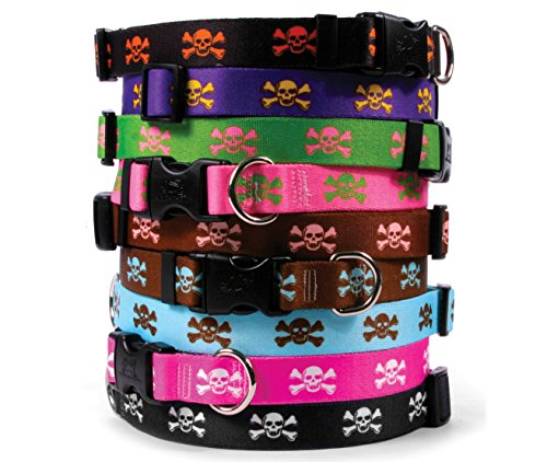 Skull & Crossbones Dog Collar - Purple with Gold - Medium 14 to 20 inch Length x 3/4 inch Wide - with Tag-A-Long ID Tag System