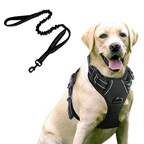 rabbitgoo Dog Harness No-Pull Pet Harness with Bungee Tactical Dog Leash, Adjustable Outdoor Pet Vest 3M Reflective Oxford Material Vest for Dogs Easy Control (Black, Large)