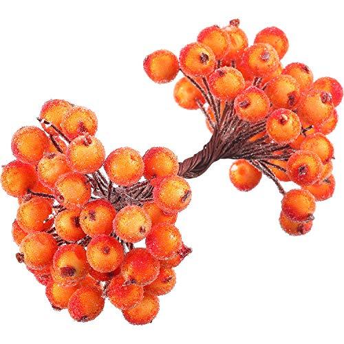 Tatuo Packung von 200 Stück gefrostetem Obst Holly Beeren Mini Weihnachten künstliche Beerenblume für Zuhause, Hochzeit, Party, Geburtstag, DIY Dekoration (orange)