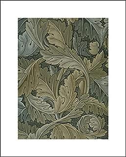 acanthus morris wallpaper