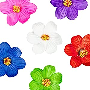 Super Z Outlet Hula Girl Paper Foam Hibiscus Color Assorted Flower Lei Hawaiian Island Rainforest Theme Hair Clips for Costume, Birthday Party Favors, Event Decoration Supplies (12 Pack)