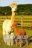 2019-2023 Five Year Planner Llama Monthly Schedule Organizer: Pocket Mini Academic 60 Months Calendar; Slim Agenda...