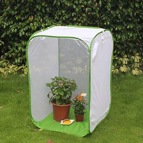 MYYINGELE Papillon Mini Papillon Habitat Mesh Cage Pliable Insectes Filet Cage Terrarium Pop Up pour Enfants, B