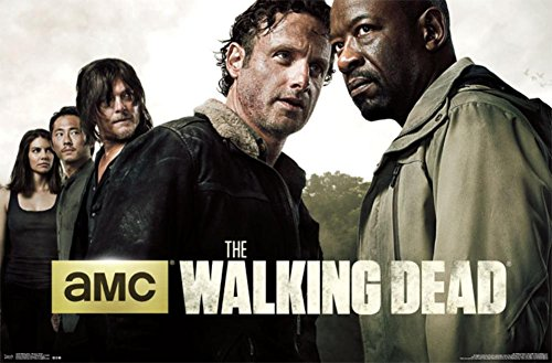 Poster The Walking Dead Marca The Poster Corp