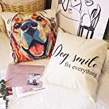 Decorative Dog Throw Pillow Cover Cotton Linen Lovely Cute Pet Pillowcase 18 x 18 Set of 2 Cozy Animal Home Decor for Sofa Couch Bed (Golden Retriever Dog ×1 Dog Smile Fix Everything ×1)