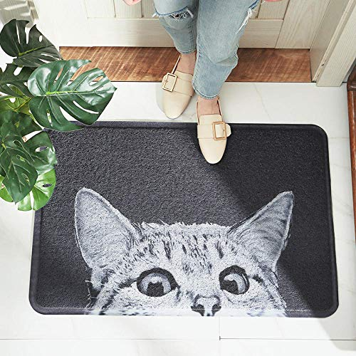 DLSM Cartoon PVC silk ring door mat carpet household wear-resistant rubbing soil entrance hall door non-slip floor mat-C3_45*75CM