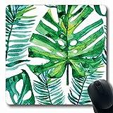 マウスパッド長方形7.9x9.8パターンテクスチャ水彩緑熱帯葉ヤシ植物アロハオーガニックバナナリーフツリー植物滑り止めラバーマウスパッドオフィスコンピューターラップトップゲームマット