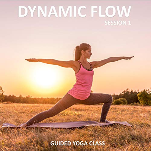 Dynamic Flow Session 1 cover art