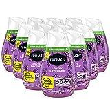 5. Renuzit Gel Solid Air Freshener, Lovely Lavender Scent, Nonstop Freshness, 12 Total Air Freshener Cones